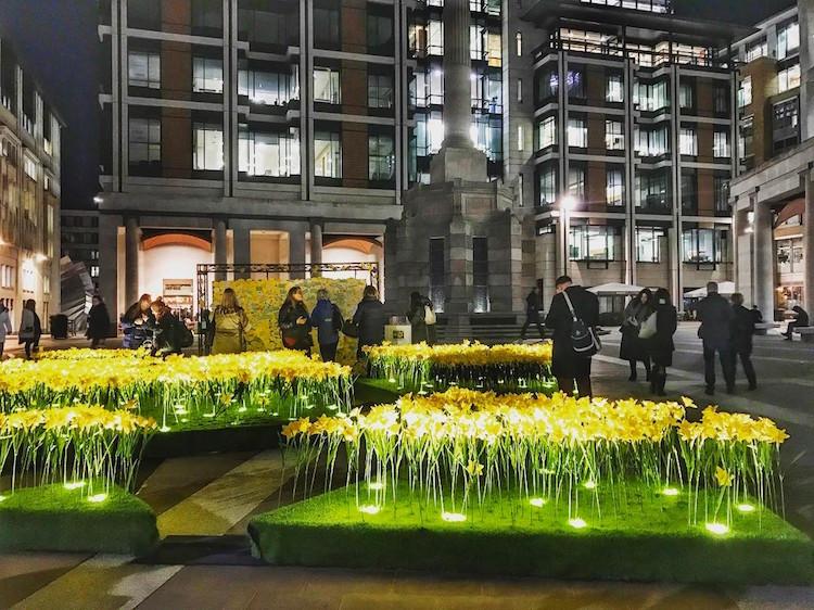 marie-curie-greyworld-garden-of-light-daffodil-installation-8.jpg