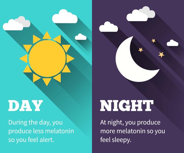 day-night-melatonin